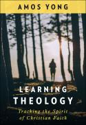 Learning theology : tracking the spirit of Christian faith