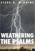 Weathering the Psalms : a meteorotheological survey